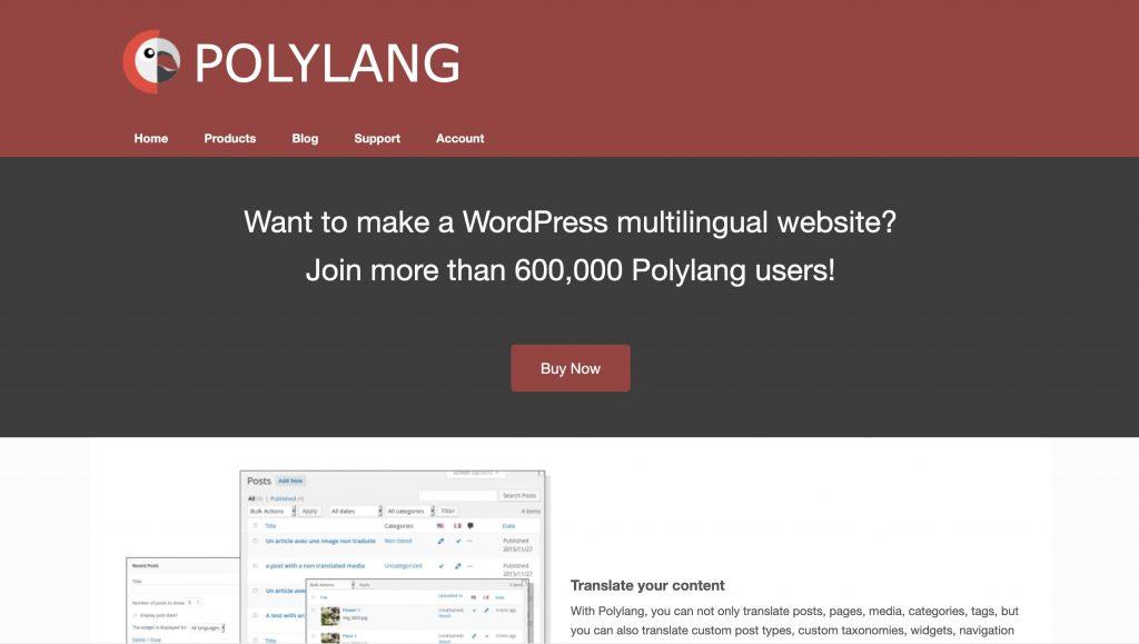 Polylang translation plugin